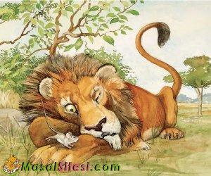 Uyuyan Aslanla Kabadayı Sıçan