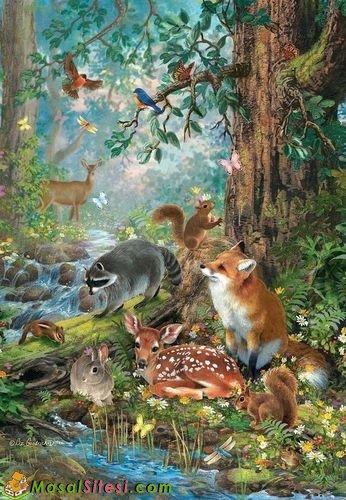 hayvanlarind